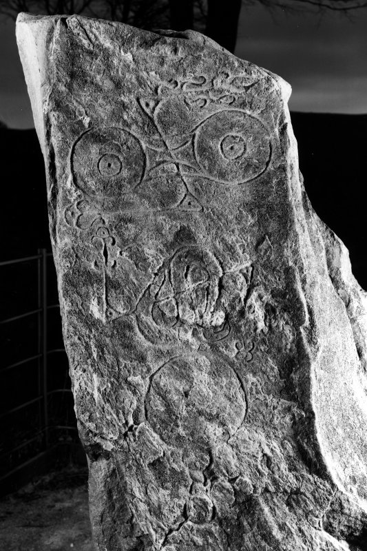 Myreton Farm, Picardy Stone. Detail of upper part of stone showing carvings, dated 16 April 1996.
