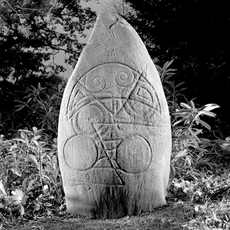 Logie Elphinstone (no. 2), Pictish symbol stone. View of front face, dated 14 November 1995.