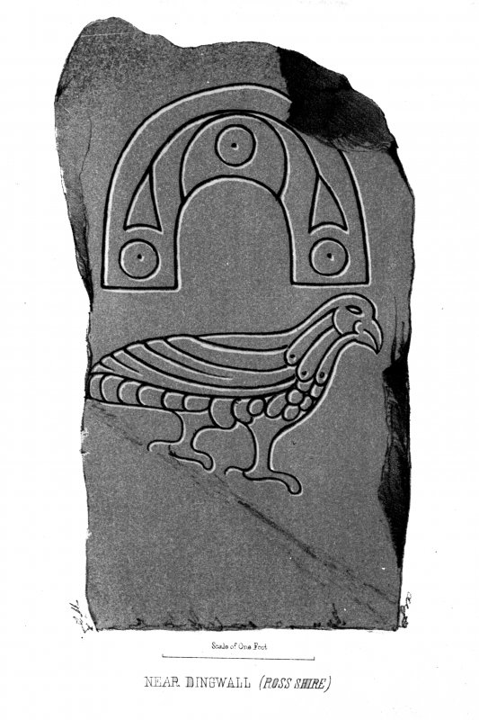 The Strathpeffer symbol stone. From J Stuart, The Sculptured Stones of Scotland, i, pl. 108.