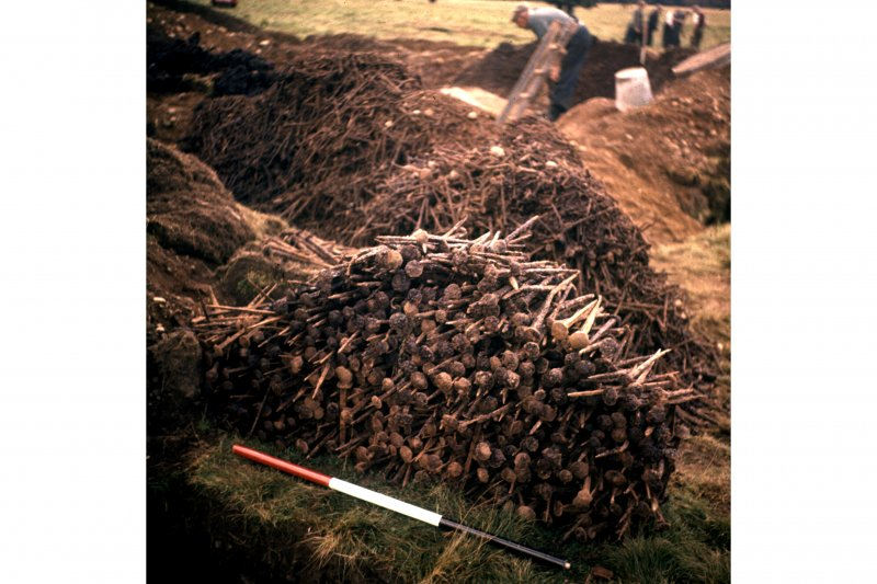 Excavation photograph showing the nails removed from the refuse pit.