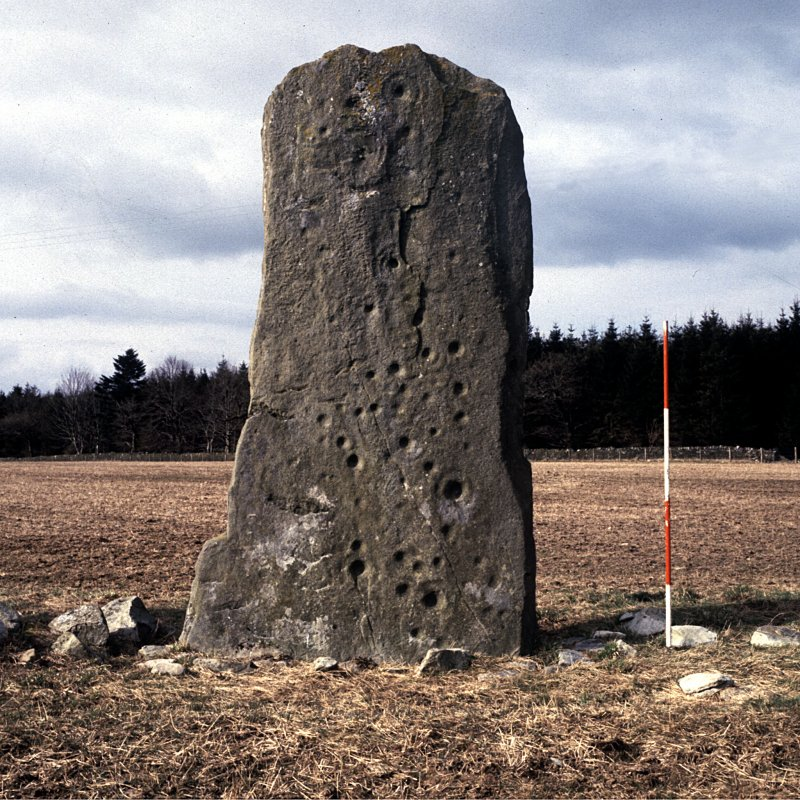 View of cup and ring marked standing stone, Ballymeanoch.