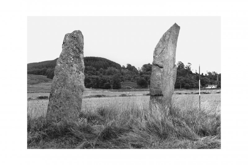 Standing stones, Ballymeanoch, from W