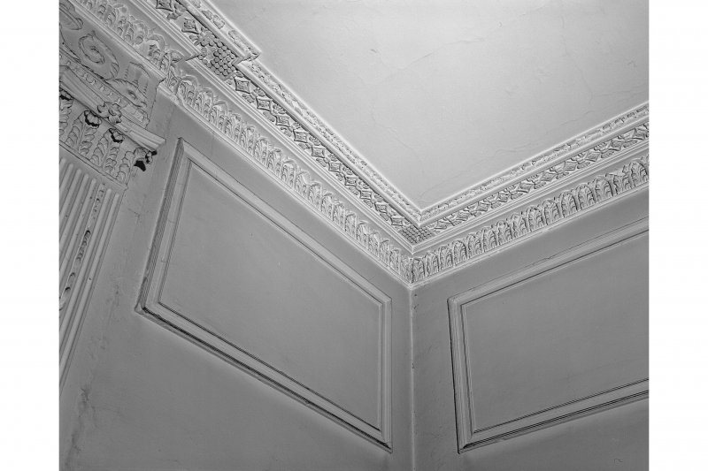 Ground floor, South East apartment, ceiling cornice