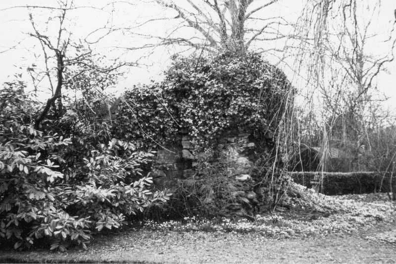 General view of remains of Castle covered in ivy.