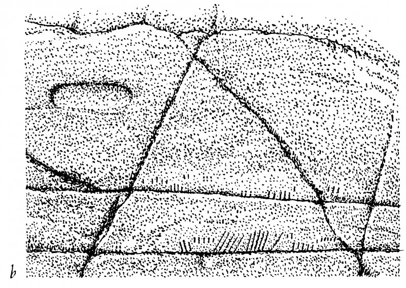 Drawing of rock markings ink 1:10 RCAHMS