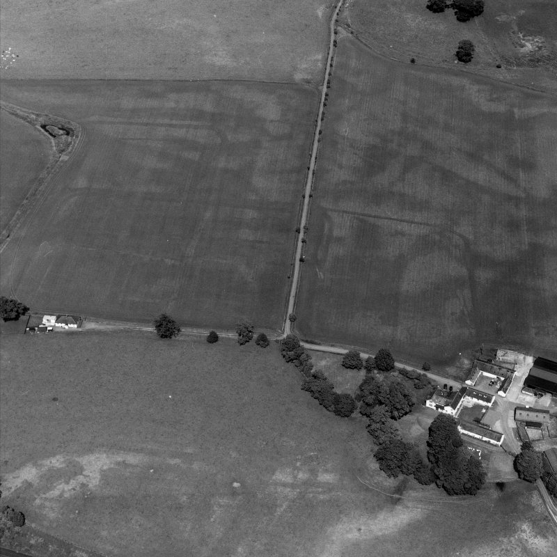 Bankhead, Dalswinton, oblique aerial view, taken from the SSW, centred on the cropmarks of Roman Forts and showing an oval enclosure in the centre right of the photograph..