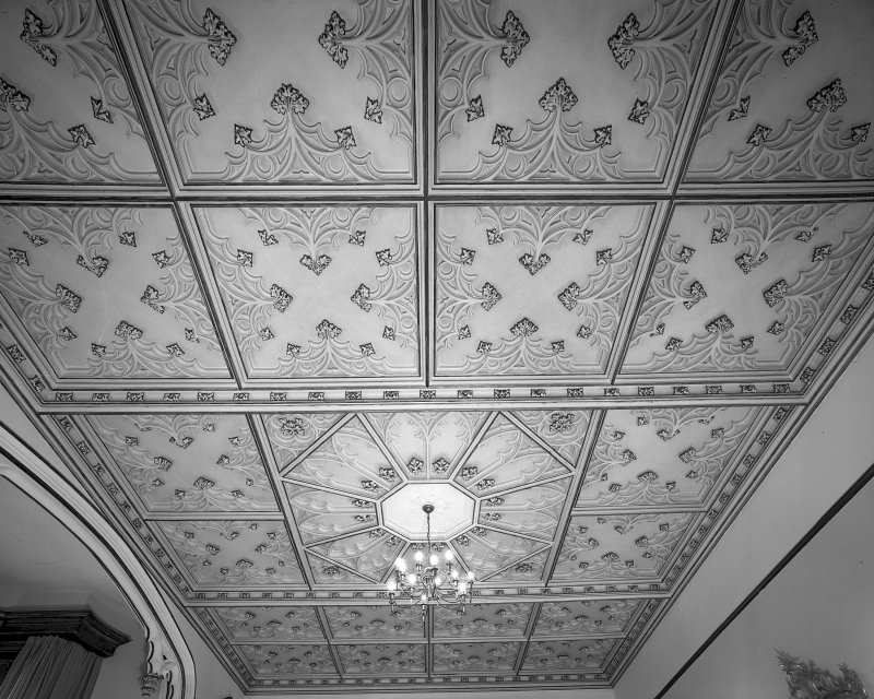 Minard House (Castle), interior. View of ceiling in first-floor drawing room.