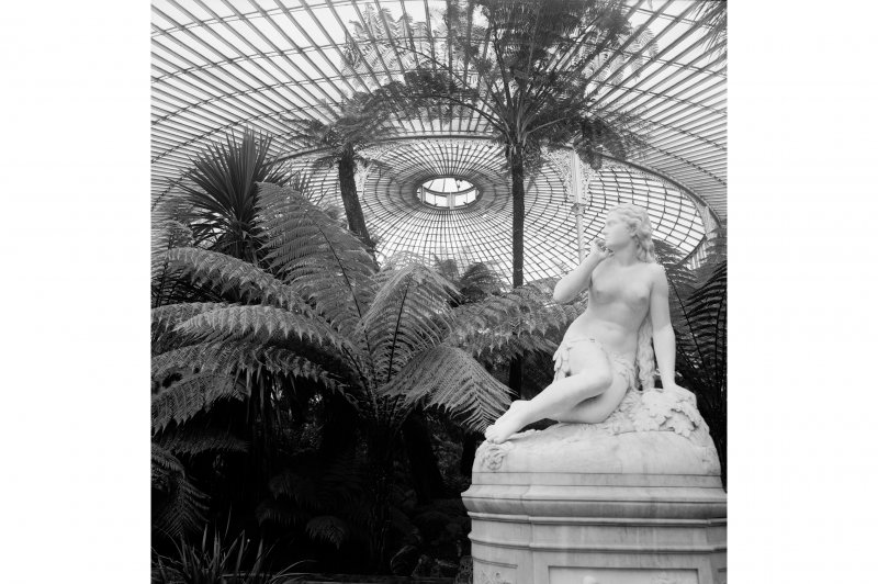 Statue, plants and roof structure in Kibble Palace, Botanic Gardens, Glasgow.