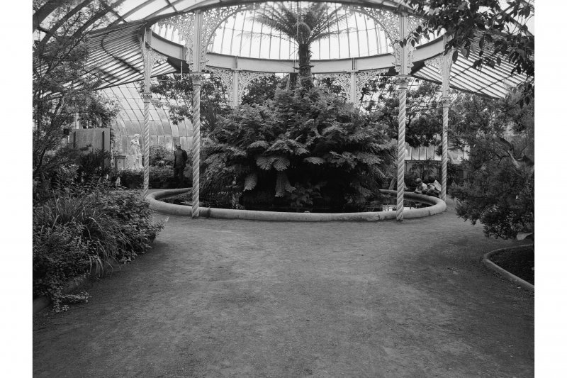 Interior. General view showing plants and cast-iron columns and brackets.