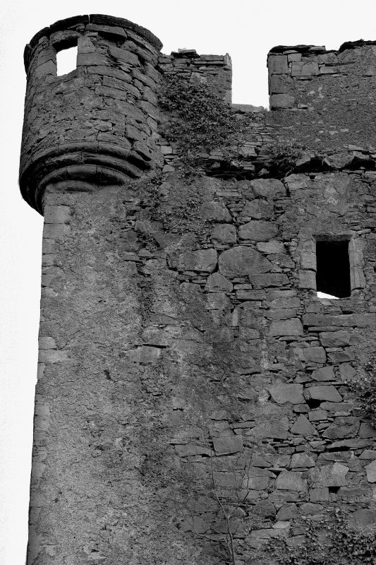 Mull, Moy Castle. View of North angle turret from North-West.