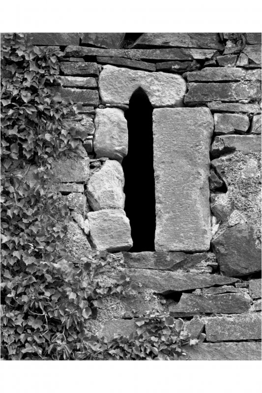 Mull, Moy Castle. Detail on North-West wall showing speciman lancet window.