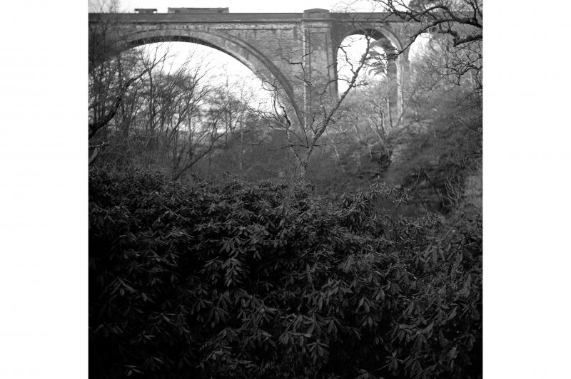 Ballochmyle Viaduct View as train crosses