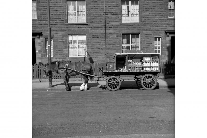 Glasgow, Cuthbertson's Dairies View of horse-drawn milk cart