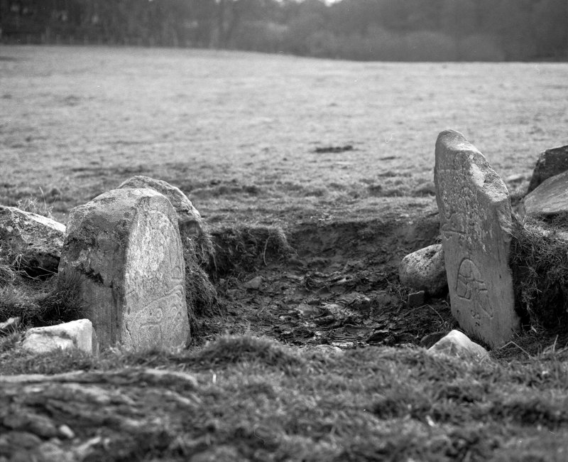 View of Pictish symbol stones from within enclosure. Parc-an-Caipel, Congash