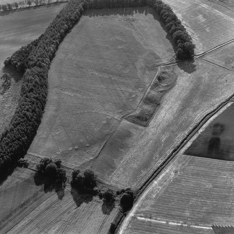 Spittalfield and Wester Drumatherty, oblique aerial view, taken from the ENE, centred on the cropmarks of a Roman road and quarry pits, a linear cropmark, a palisaded enclosure, a possible pit-alignme ...