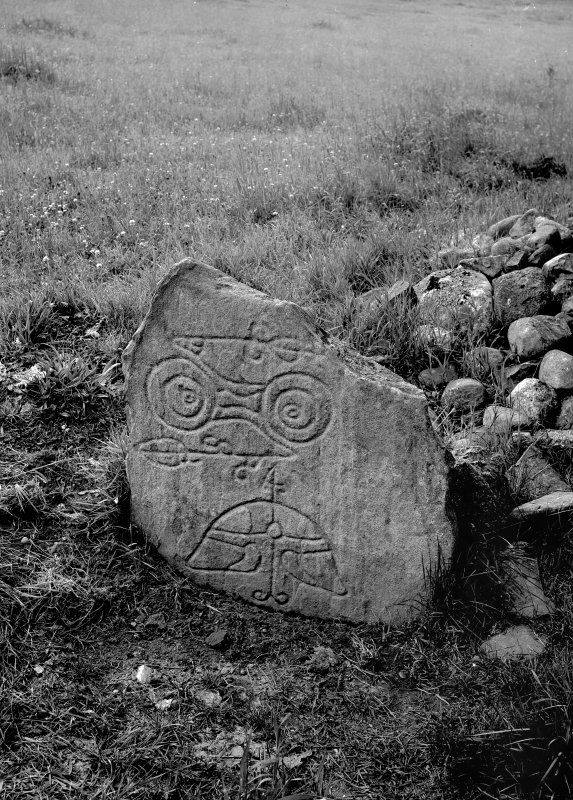 Pictish symbol stone no.2. Original negative captioned: 'Sculptured Stone at Congash, Grantown, Inverness Aug 1910'.