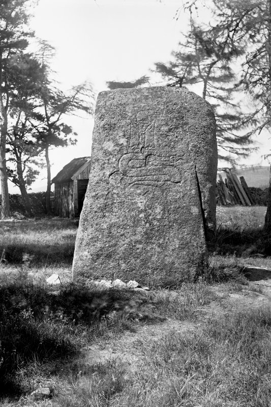 General view of Pictish symbol stone. Original negative captioned: 'Sculptured Stone at Cothill, Craigmyle, near Torphins. July 1902'.