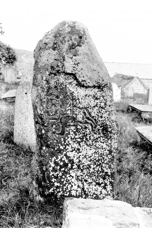 Reverse of Pictish symbol stone. Original negative captioned: 'Sculptured Stone (Back) in Migvie Churchyard 1904'.