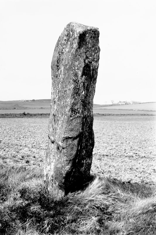 View of ogam-inscribed standing stone. Original negative captioned: 'Auquhollie Ogham inscribed stone near Stonehaven June 1917'.