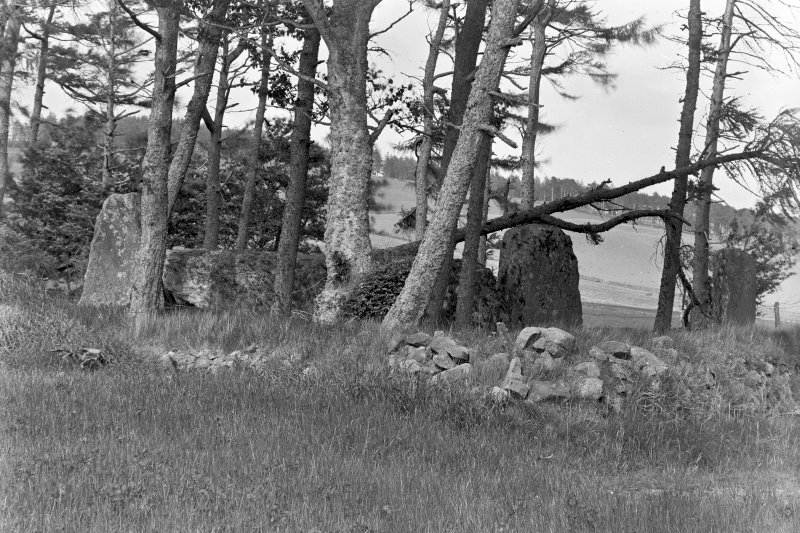 View of recumbent stone, flankers and another stone of the circle. Original negative captioned 'Stone Circle at Old Keig, View from South West / June 1904'.