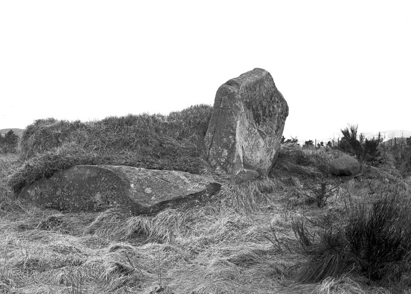 View of recumbent stone and pillars. Original negative captioned: 'Stone Circle at Dunnideer viewed from North East April 1906'.