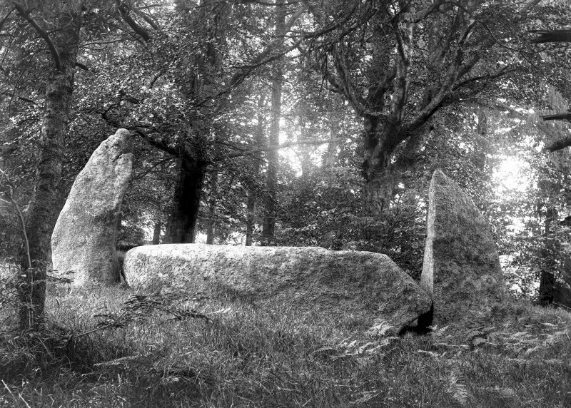 Recumbent stone and flankers, from the south. Original negative captioned: 'Midmar Kirk Circle. Recumbent Stone and Pillars viewed from outside circle looking north. July 1902'.