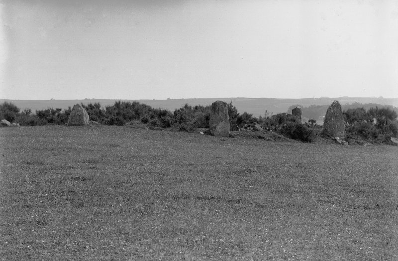 General view from the west. Original negative captioned: 'Stone Circle at Auchquhorthies, near Portlethen Station General View from the West July 1902'.