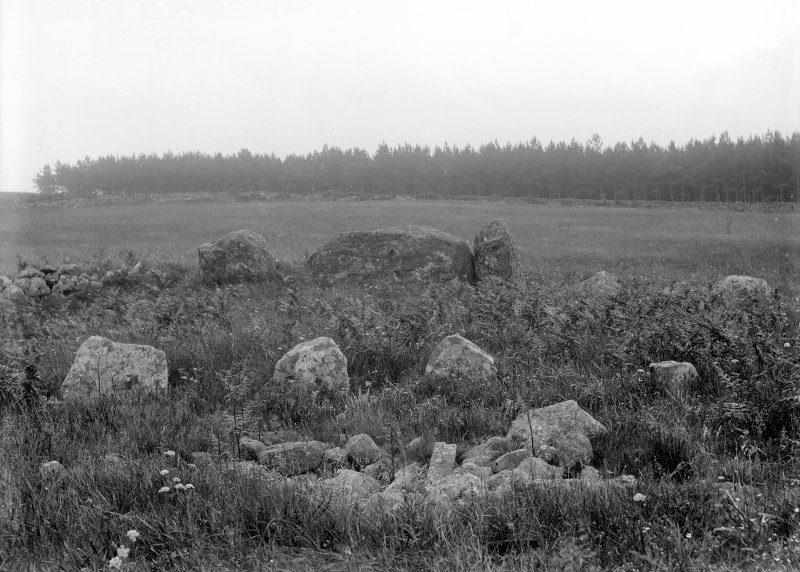 General view. Original negative captioned: 'Esslie, the Greater Circle View from centre looking South showing stone setting July 1902'.