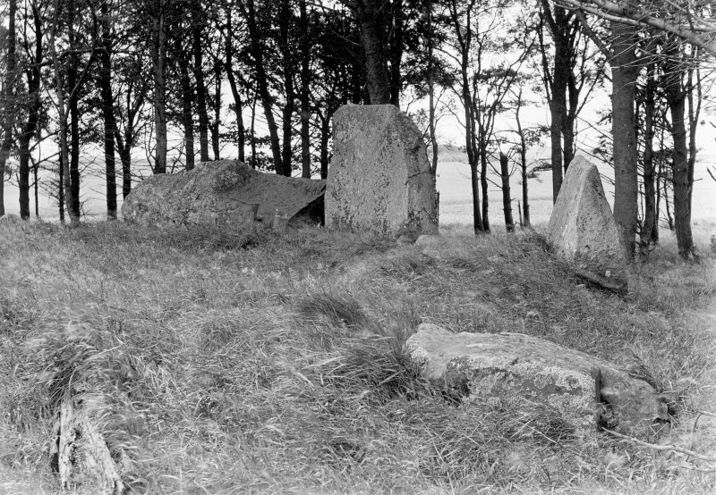 View of recumbent stone, flankers and two stones of the western arc.