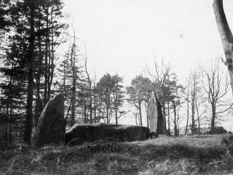 Recumbent stone and pillars, looking approximately south west.