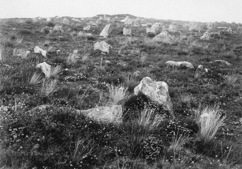 View across the stone rows, with a small cairn in the background.