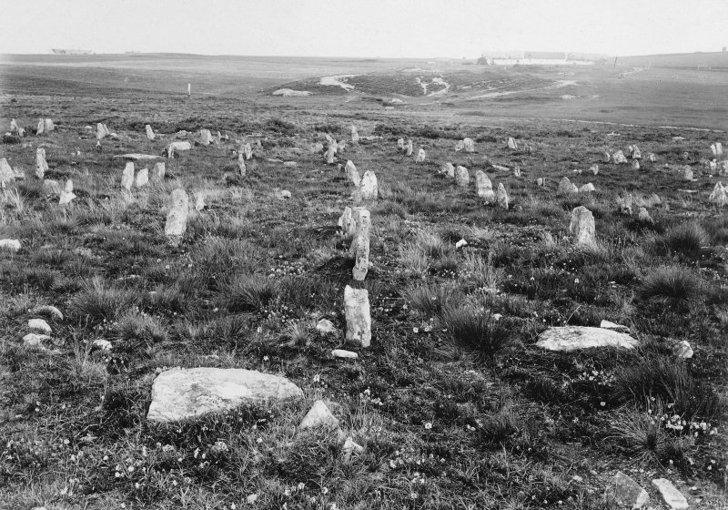 General view of the stone rows, looking south from the hill-top.