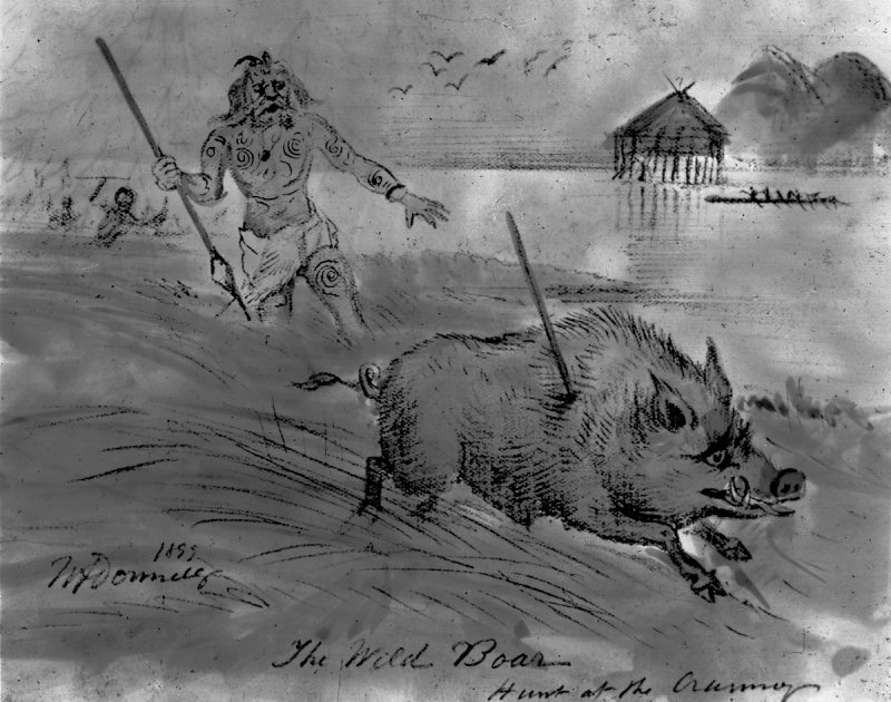 Dumbuck crannog.  Titled: 'The wild boar hunt at the crannog'.