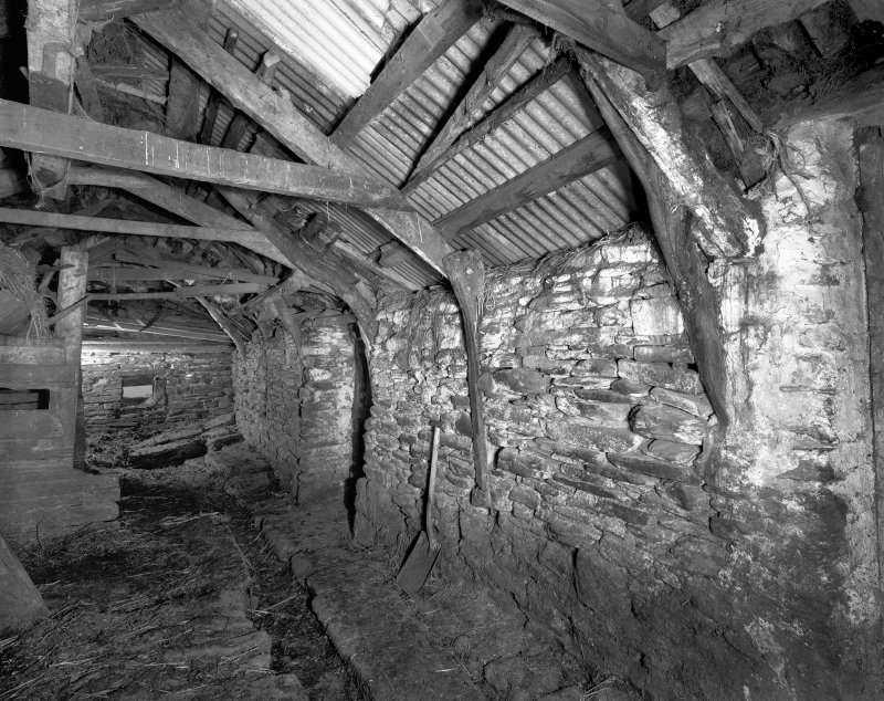 Byre, west wall showing surviving cruck-frames