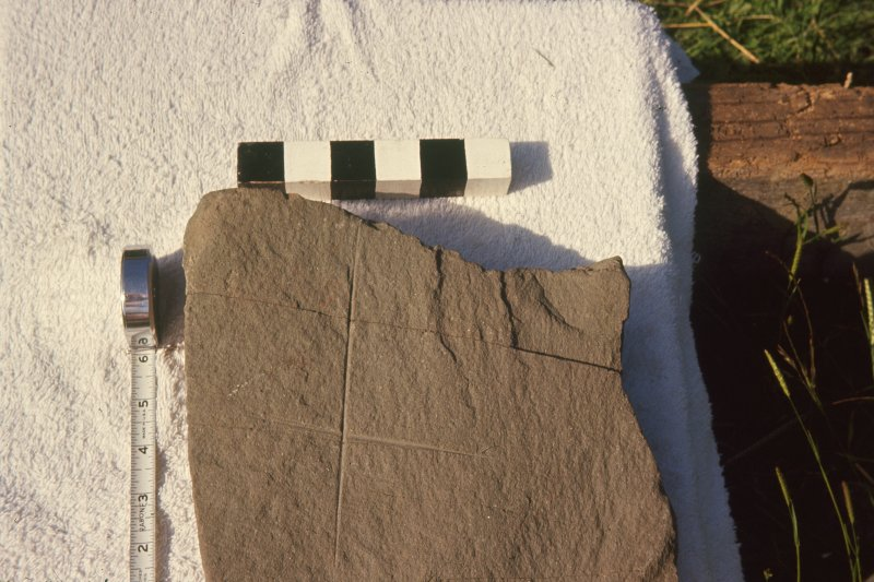 Copy of colour slide showing detail of incised cross slab.  Ardwall Island, Dumfries and Galloway NMRS Survey of Private Collection Digital Image Only