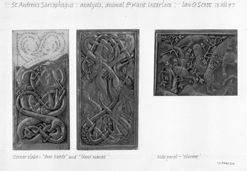 Digital image of drawing of St Andrews Sarcophagus: analysis, animal and plant interlace.  Drawing shows analysis of 'deer-heads' and 'lions' manes on corner slabs, and thicket in upper left of main panel.