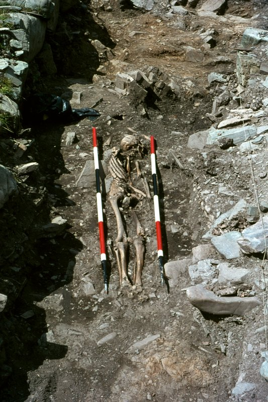 Copy of colour slide showing detail of skeleton no.22 Ardwall Island, Dumfries and Galloway NMRS Survey of Private Collection Digital Image Only