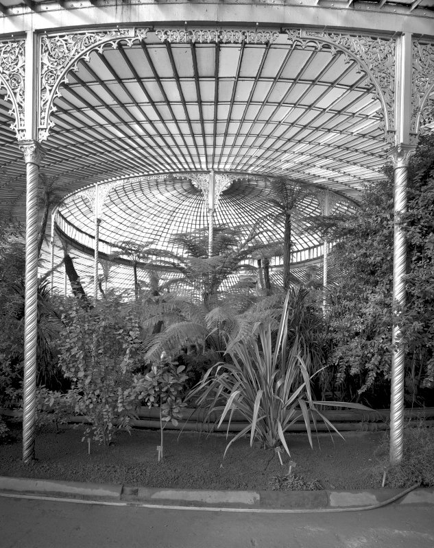 Interior. View of roof.  Digital image of B/31912.
