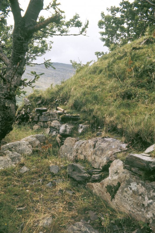 Copy of colour slide showing detail of vitrified fort at Dun Lagaidh nr Ullapool, Highland- outer wall face of T.L. fort  at west end NMRS Survey of Private Collection Digital Image only