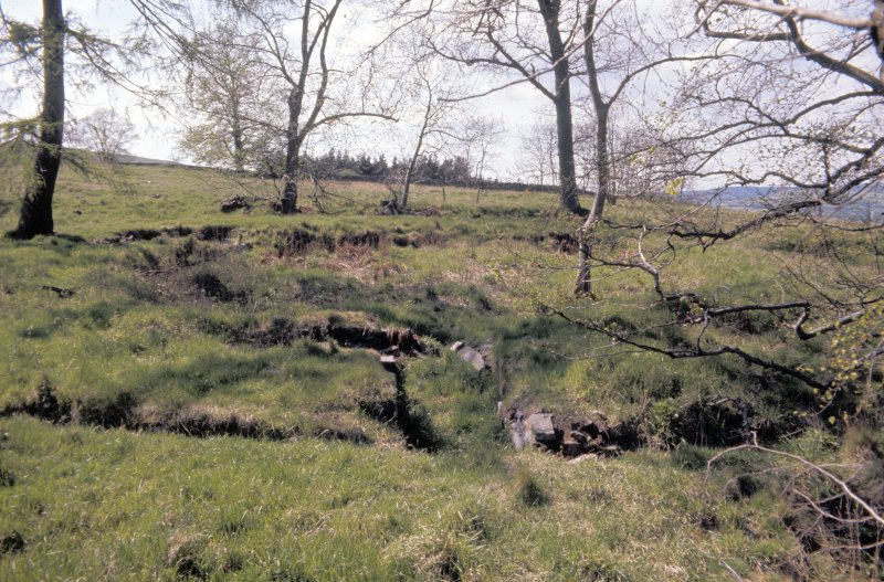 Copy of colour slide showing view of Torwoodlee Broch Selkirkshire - entrance NMRS Survey of Private Collection Digital Image only