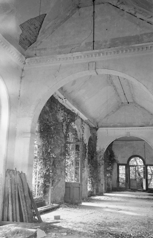 Interior. View of orangery. Digital image of ML 1813.