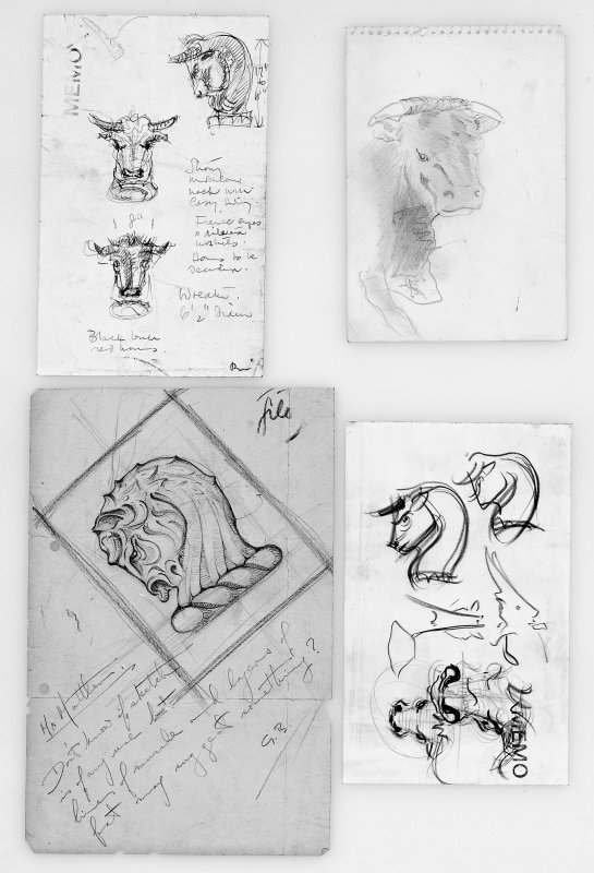 Sketches of bulls including the Short-horned, Ayrshire and Hereford.  Reference material for the Bilsland Crest, Thistle Chapel.