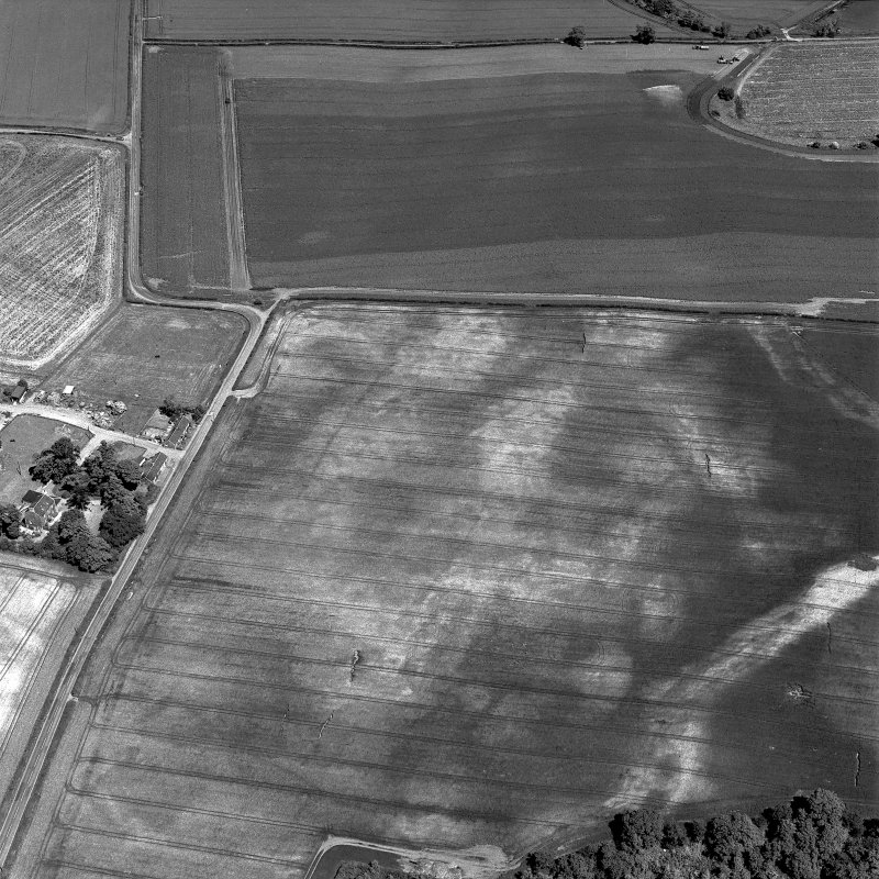 Preston Mains, oblique aerial view, taken from the SW, centred on the cropmarks of a possible cursus monument and enclosure. A linear cropmark is visible in the bottom left-hand corner of the photograph.