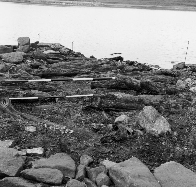 View of the excavation at Loch Glashan crannog.