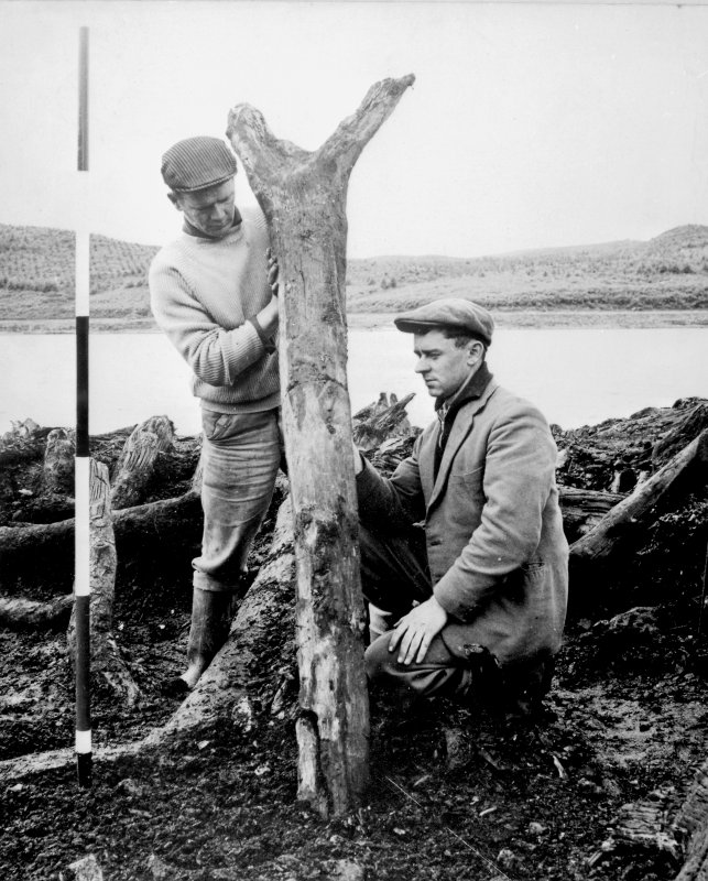 View of excavation showing timber from Loch Glashan crannog in 1960.