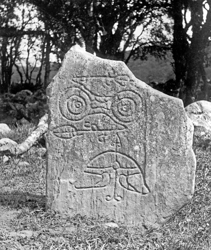 View of symbol stone. Reproduced in Allen and Anderson 1903, Early Christian Monuments of Scotland, fig.99.