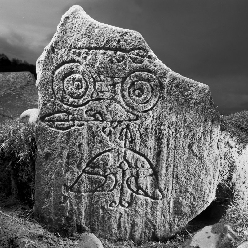 Parc-an-Caipel, Congash. Detail of Pictish symbol stone 1.