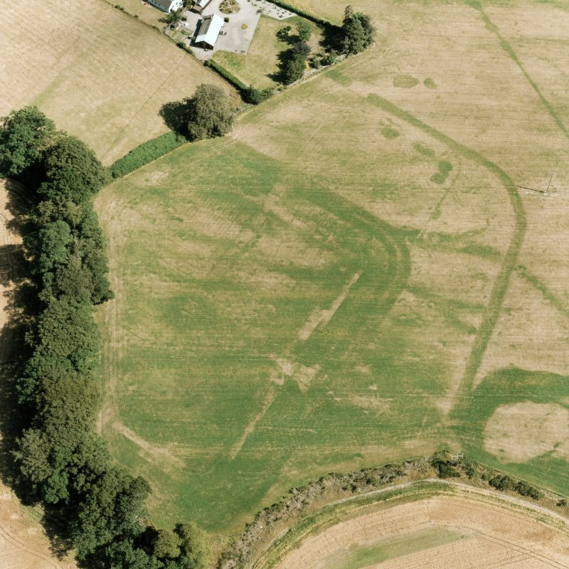 Dalginross, oblique aerial view, taken from the WNW, centred on the cropmarks of the Roman Fort.