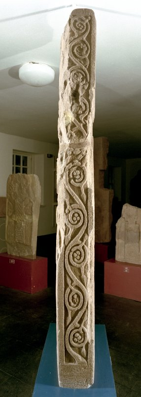 View of vine-scroll on edge of the Drosten Stone Pictish cross-slab (St Vigeans no.1).