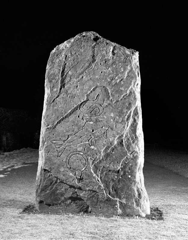 Scanned image of Pictish cross slab in manse garden, view of east (back) face (flash)